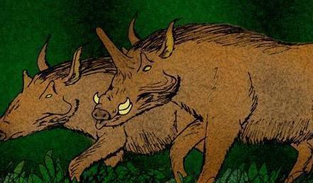 1000万年前的库班猪——长角的猪