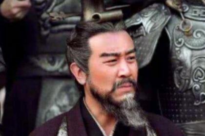 虎父无犬子,为什么曹操的儿子都这么优秀?
