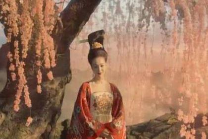 唐玄宗如此喜欢杨贵妃,为何却不让她当皇后?