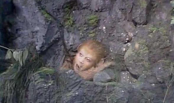 《西游记》中孙悟空打死的老狐狸有什么来历?为什么在封神中地位那么高