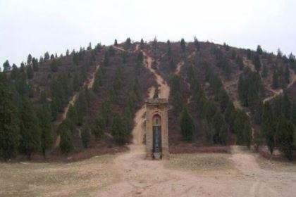 看揭秘:汉武帝为什么要把天下各地的豪强地主都迁到自己的茂陵?