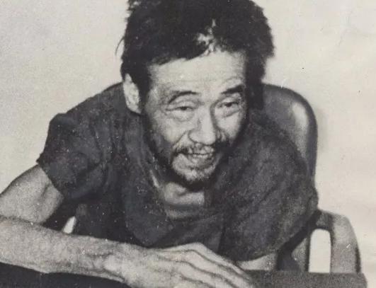 二战最后的日本兵,藏身小岛28年,被接回日本